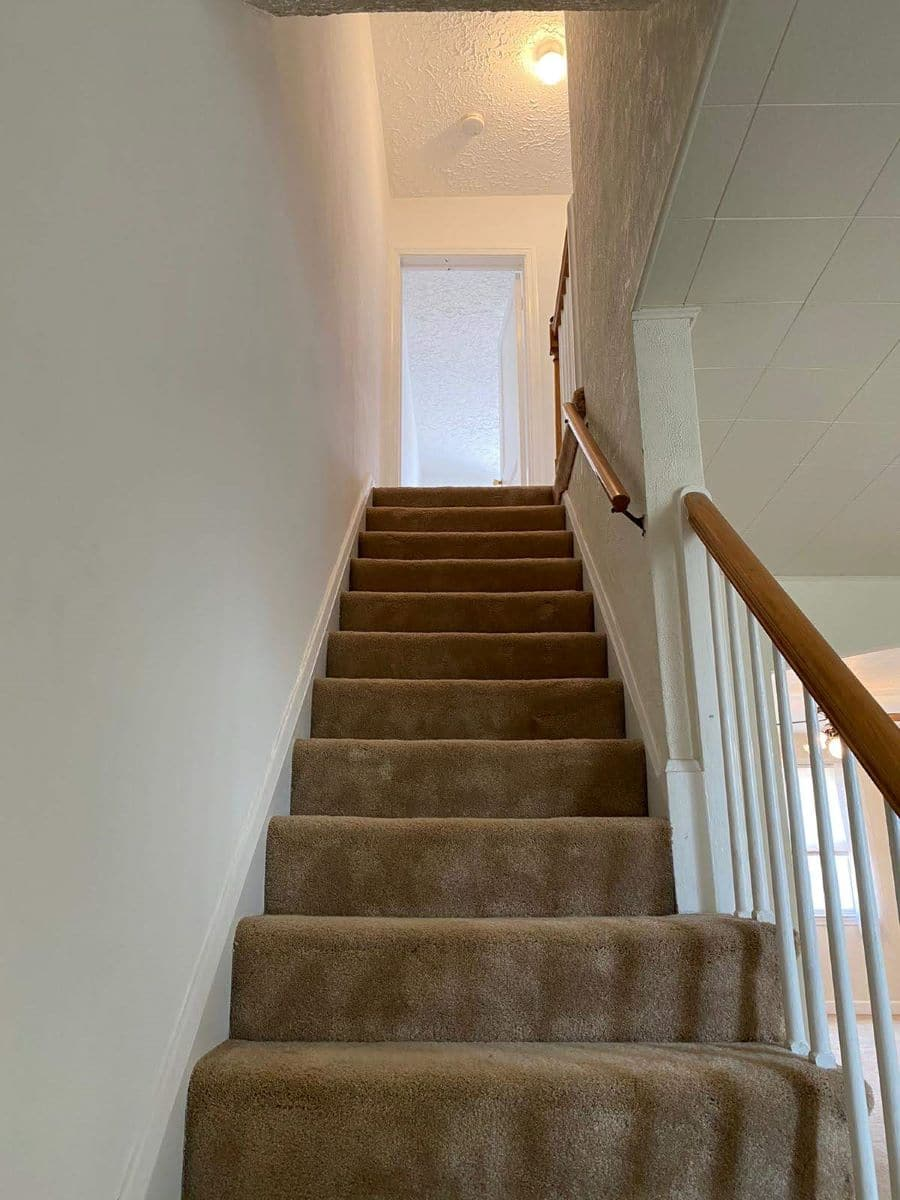 Carpeted stairs leading upstairs in 8357 Ridgely Oak Rd Baltimore Home