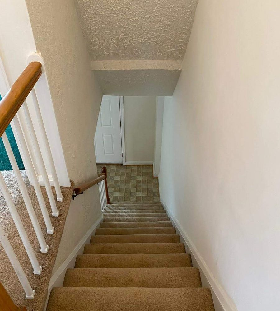 Carpeted stairs leading down to the main level at 8357 Ridgely Oak Rd