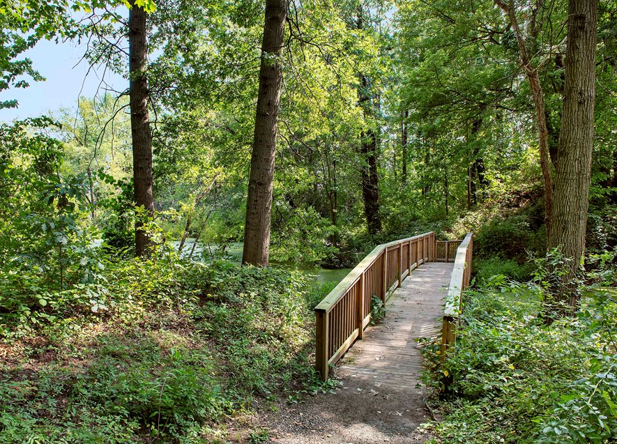 Scenic Trail in Rosedale